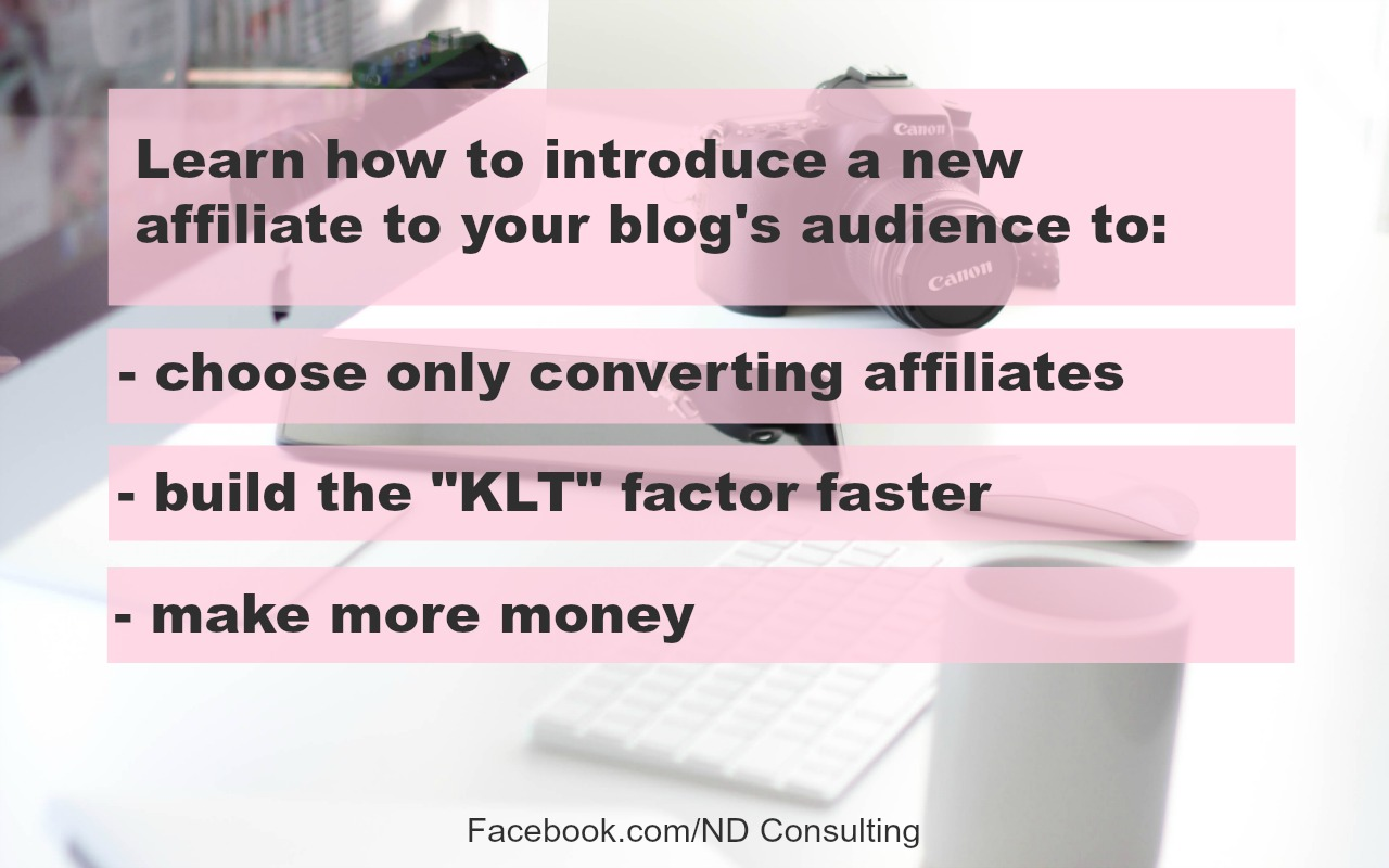 Learn how to choose an affiliate partner for your audience.
