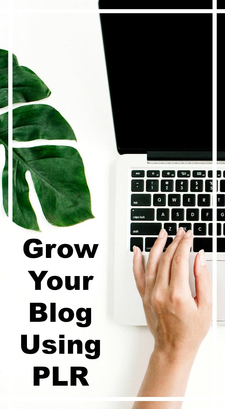 Learn how to use PLR content to grow your blog. Customize it and earn more from affiliates, social media, and email.