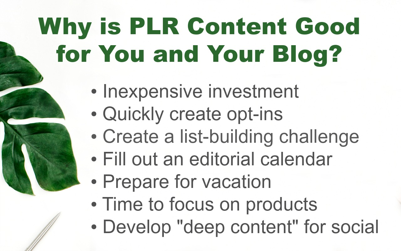 These are a few of the reasons why you should learn how to use PLR content on your blog.
