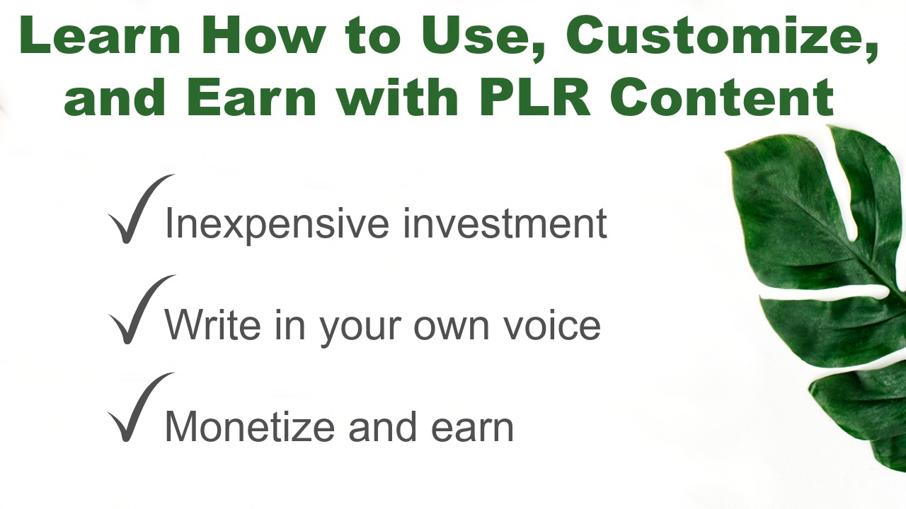 How to use PLR content to grow a blog and earn more income